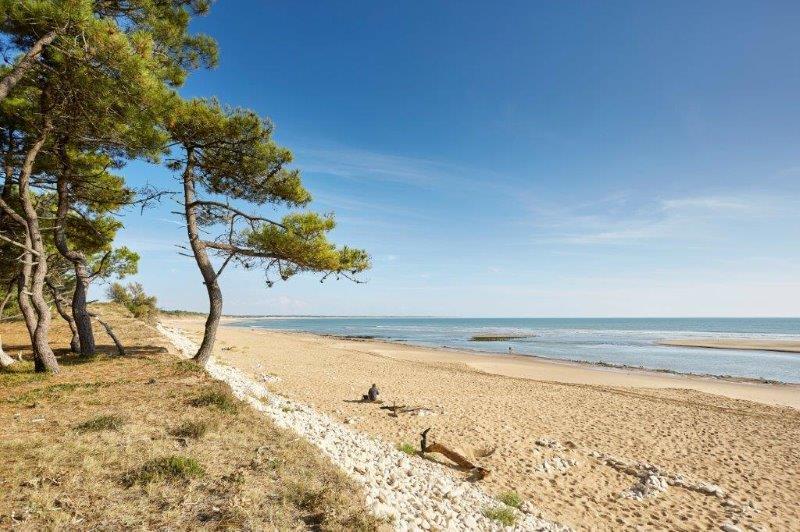 Pied à terre en Vendée près de Saint Mathurin - Parc résidentiel
