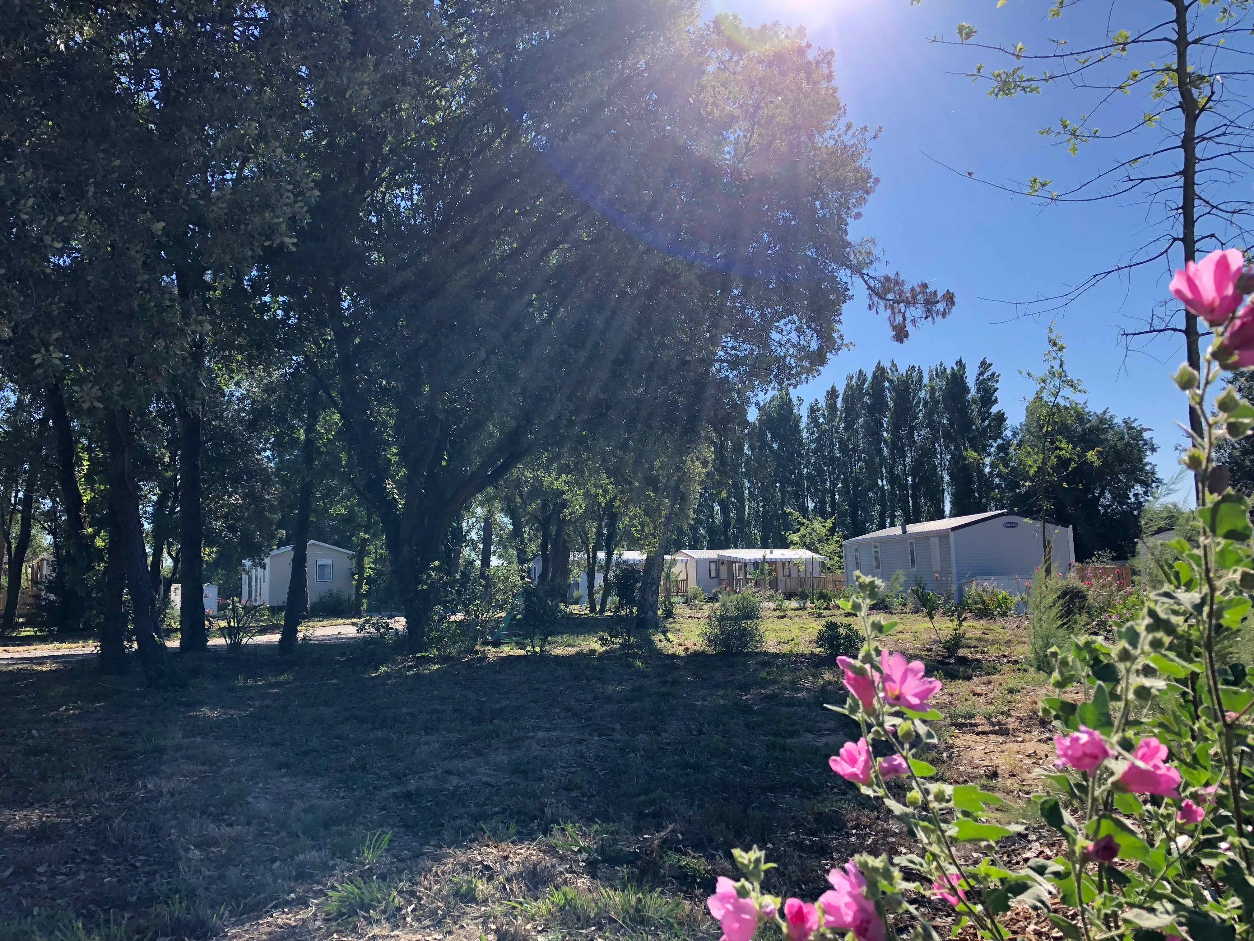terrain dans parc résidentiel