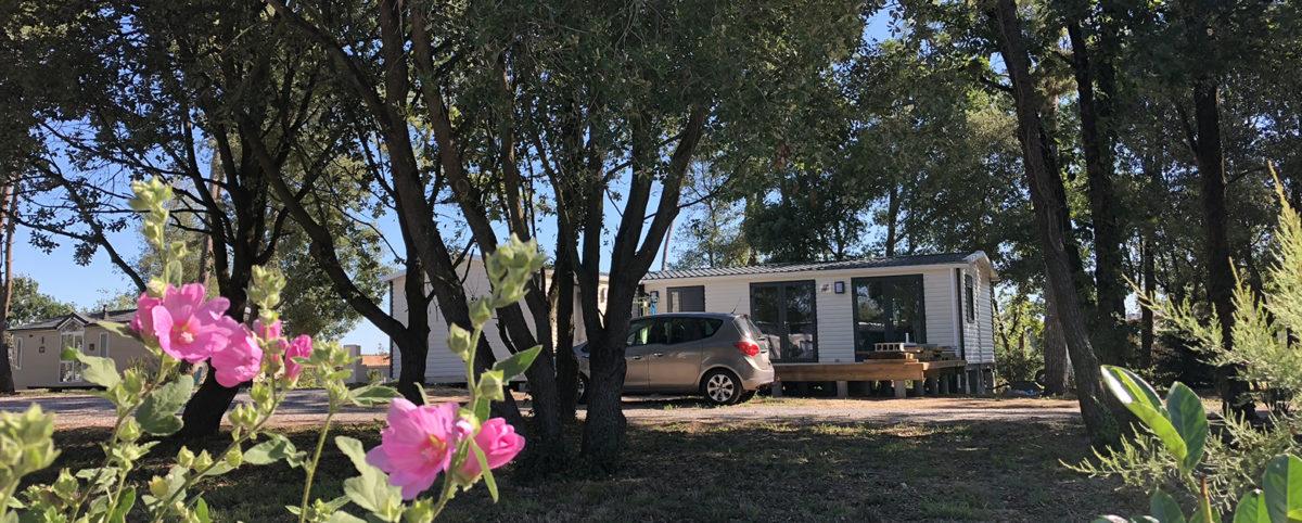 camping ouvert toute l'année en vendée